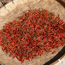 Chili on the Market in Laos