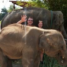 Elephant Retirement Park - zwischen den Elefanten