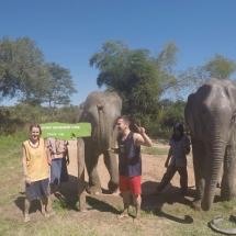 Gruppenfoto im Elephant Retirement Park